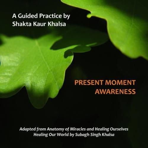 Present Moment Awareness-500